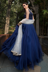 Navy Blue Organza Long Dress
