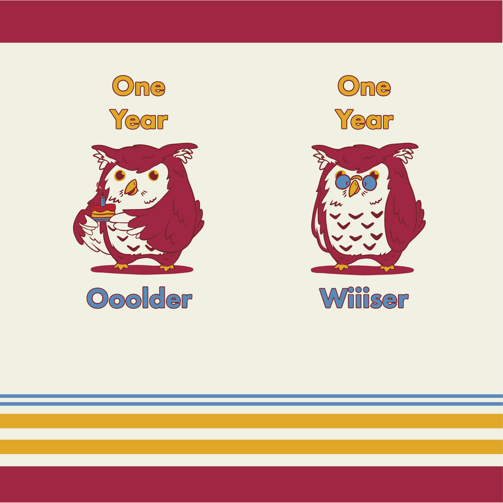 Load image into Gallery viewer, Hilarious owl birthday socks
