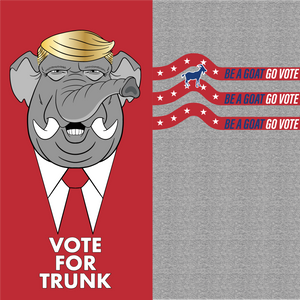 Vote For Trunk (2 Pack) - BOOSOCKI