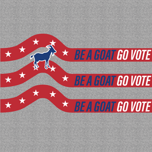 Vote You Goat No Show - BOOSOCKI