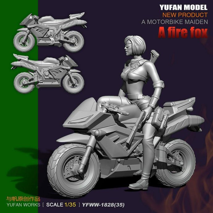 1:35 US SEAL Assault Team a Fire Fox Resin Scale Figure YFWW35-1828 - Yufan Models Store