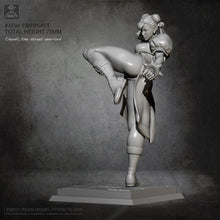 Load image into Gallery viewer, 75mm Resin Model Chunli Resin Soldier Kits Self-assembled TD-2338