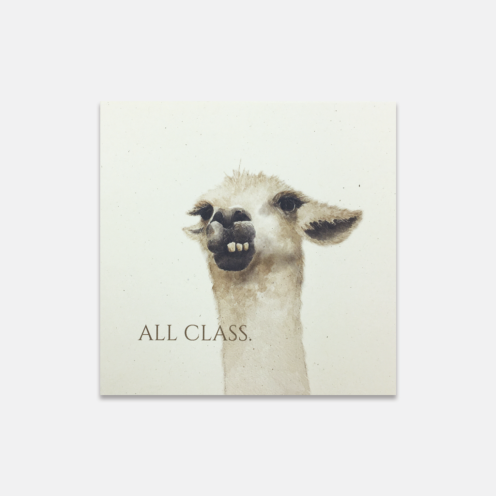 All Class Llama Greeting Card