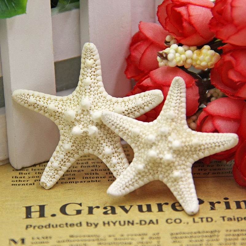 3pcs Mediterranean Style Aquarium Natural Craft Shell Artificial Sea Star Fish Tankeco Ornaments Wedding Party Home Dration