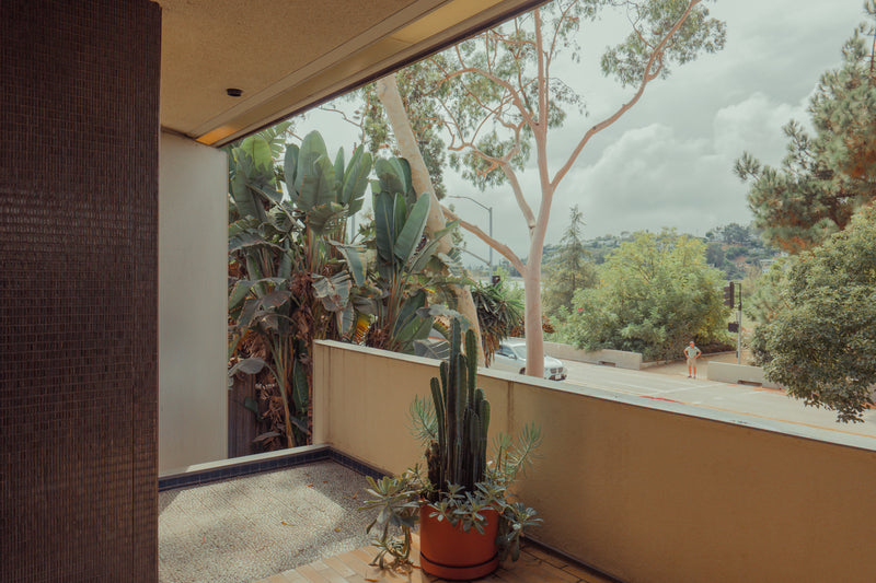 Untitled, The Neutra House