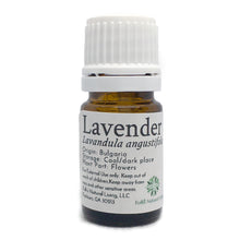 Load image into Gallery viewer, Lavender Essential Oil in 5mL Bottle