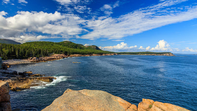 Acadia National Park Trip Tips