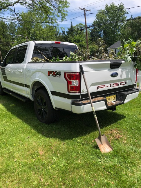 Tim's 2019 Ford F-150 XLT Special Edition FX4 5.0 - 3