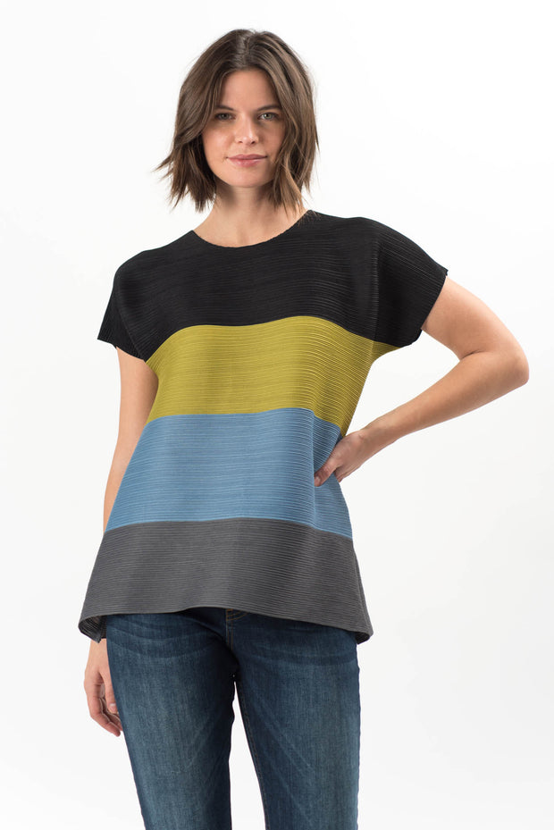 Jenny Colorblocked Pleated Top