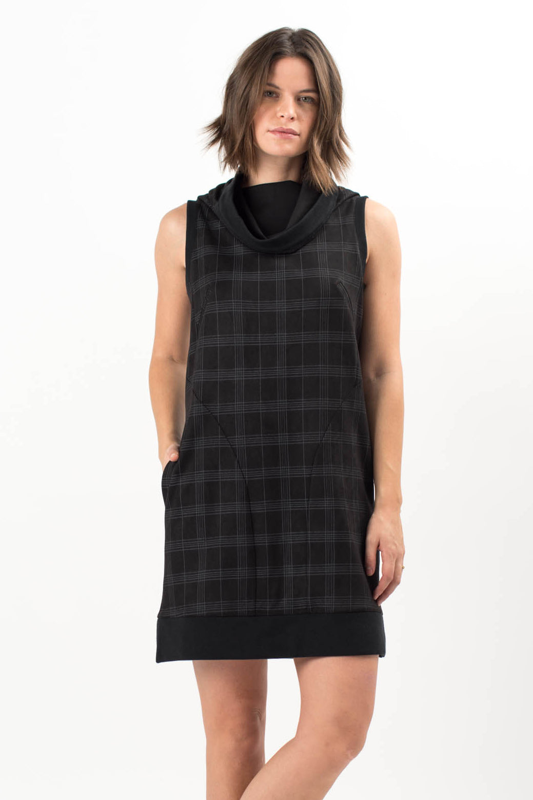 Vincent Sleeveless Dress
