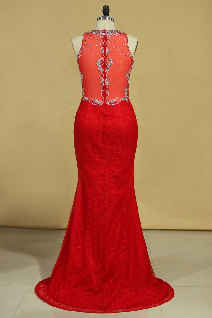 2019 Red Plus Size Prom Dresses Scoop Beaded Bodice Sweep Train Lace