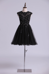 2019 Scoop Prom Dress A Line Tulle Skirt Embellished Bodice With Beads & Applique Cap Sleeve