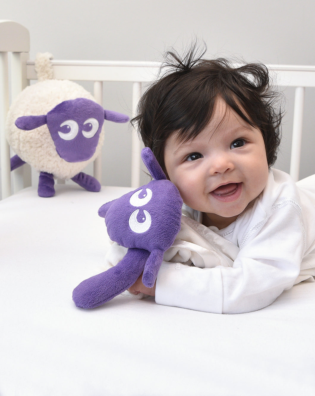 ewan purple bundle with baa baa blankie