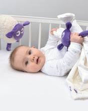Load image into Gallery viewer, ewan deluxe purple bundle with baa baa blankie