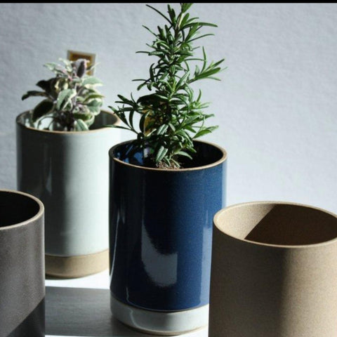 Hasami Porcelain Small Planter - Acacia