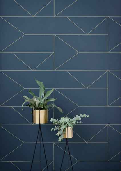Brass Hexagon Collection - Acacia