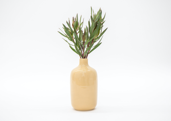 Costa Vase Collection - Acacia