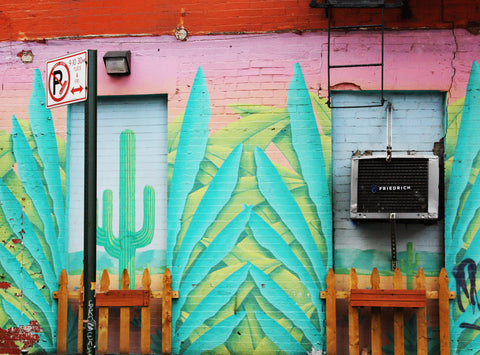 Mexican Wall, New York 2012