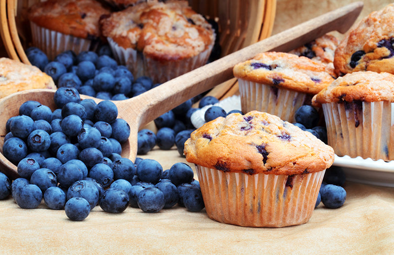 Blueberry Muffin - Fragrance Oil