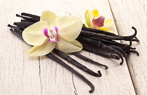 Vanilla - Soy - Fragrance Oil