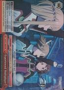 SAO/S51-E069R Experienced Multiplayer (Foil) - Sword Art Online The Movie – Ordinal Scale – English Weiss Schwarz Trading Card Game