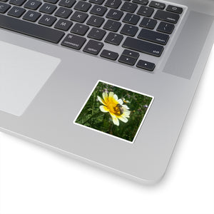 Bee on Daisy Sticker