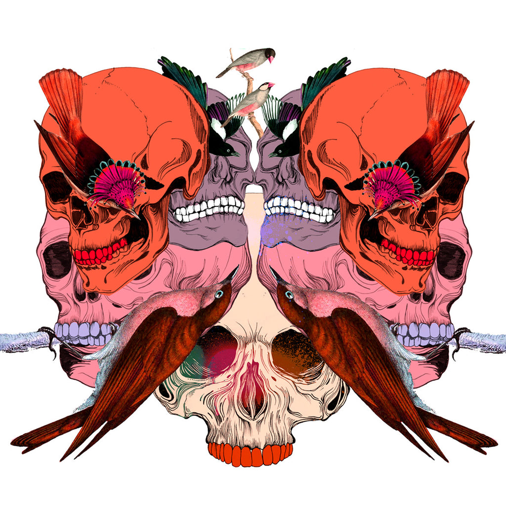 Bird Skull Mask Print - Sarah Howell Limited Edition - 1