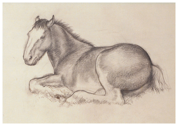 Tunnicliffe Card - Horse lying down