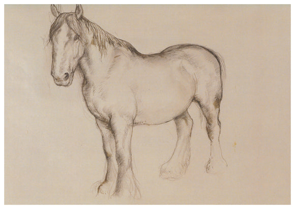 Tunnicliffe Card - Horse