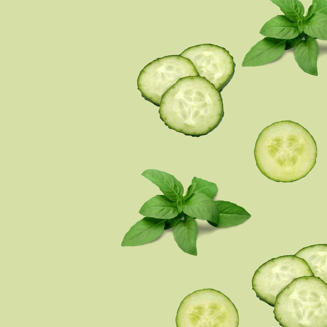 Photo: Basil sprigs and slices of cucumber against a light green flat lay background