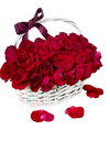 Red Rose in White Basket
