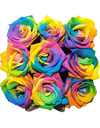 Rainbow Rose Bloom Box w Fresh Roses