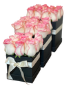 2 Tone Pink Roses Bloom Box