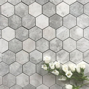 "Alicha Hexagon 3"" Polished Mosaic"