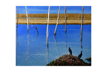 Load image into Gallery viewer, CORMORANTS (print) - MARKUS NEAL HUMBY