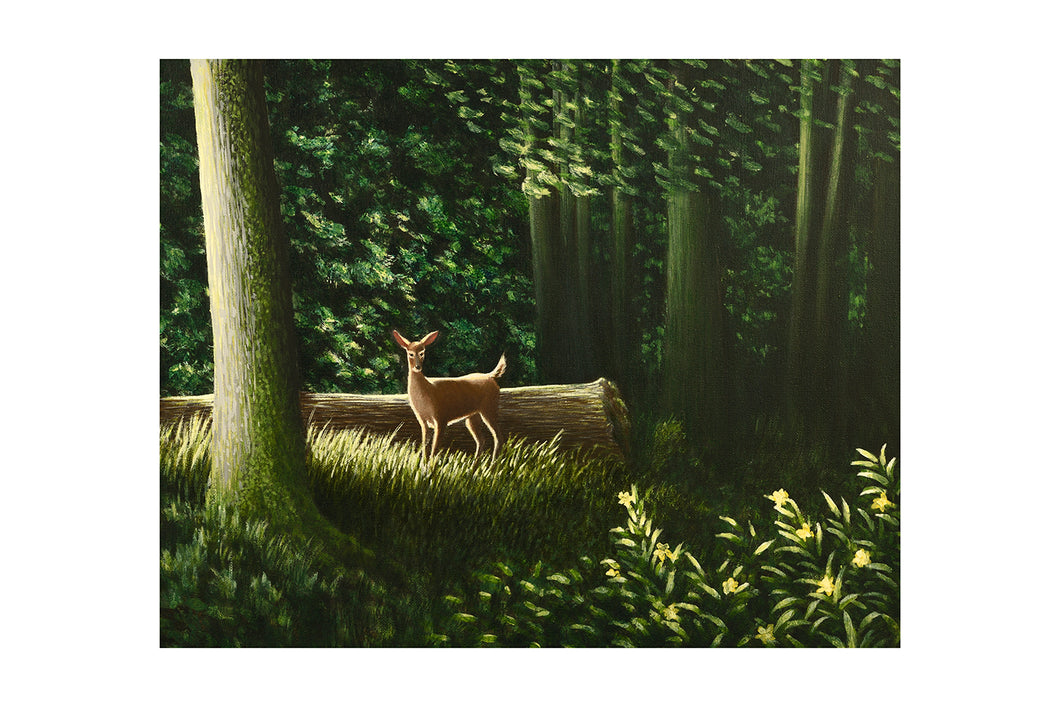 EDGE OF THE FOREST (print) - MARKUS NEAL HUMBY