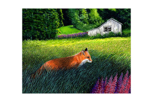 FOX ON THE RUN (print) - MARKUS NEAL HUMBY