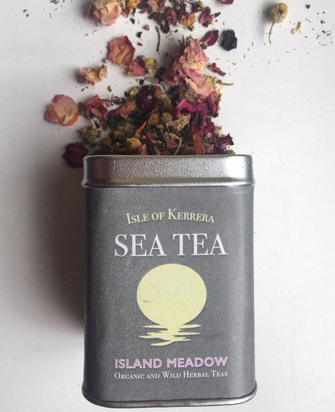 Tea Lovers Guide to the Galaxy - Gift Pack
