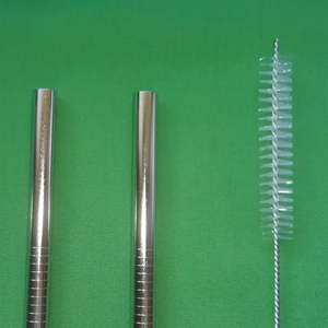 Stainless Steel Smoothie Straw 8mm - singles