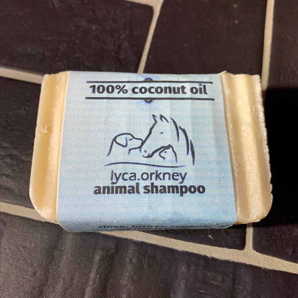 Pet shampoo bar - various