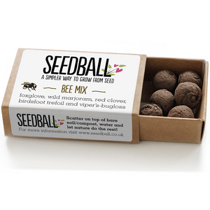Seedball matchbox - bee mix