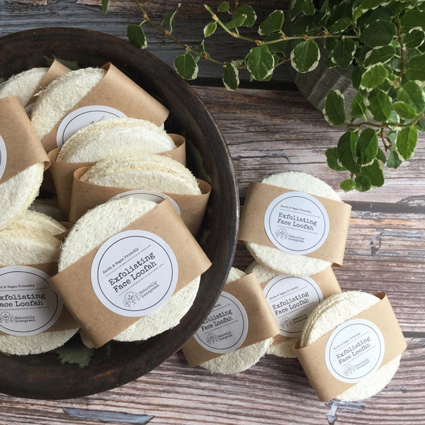 Naturally evergreen mini loofah discs