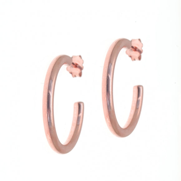 Inner Goddess / Small Hoop earrings