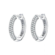 Load image into Gallery viewer, Silver Luxury Hoop Earrings in-dev