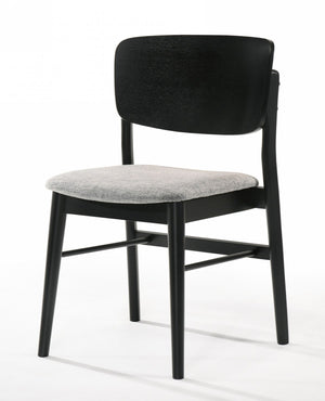 Addobe Modern Dining Chair(Set of 2)