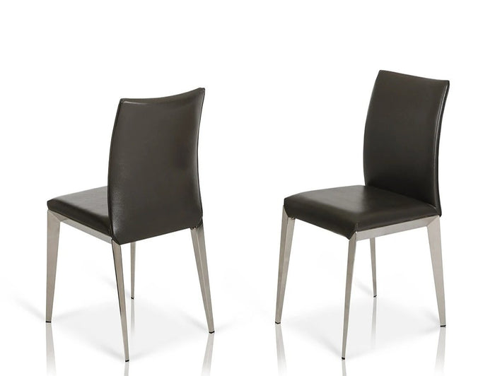 Dober Modern Dining Chair (Set of 2)