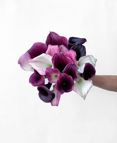 Calla Me Maybe (20 Stems)
