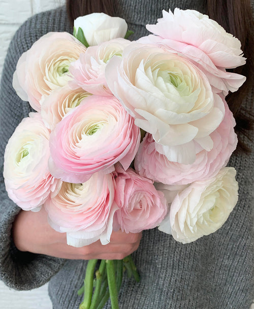 The Just Ranunculus! Bunch