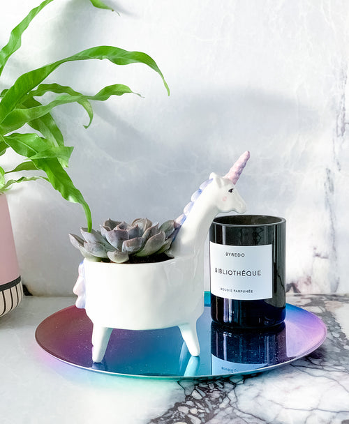 This dreamy succulent in a cute unicorn pot makes the perfect gift. Available for delivery.