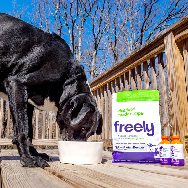 Freely-pet-enjoys-limited-ingredient-flexitarian-turkey-and-egg-dog-food